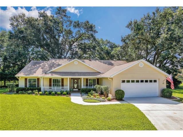 2627 Durant Oaks Drive, Valrico, FL 33596 (MLS #T2899569) :: Arruda Family Real Estate Team