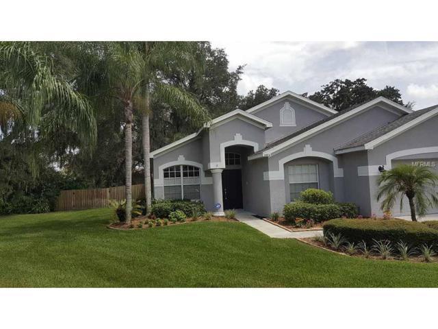 2804 Minuteman Lane, Brandon, FL 33511 (MLS #T2899577) :: Arruda Family Real Estate Team