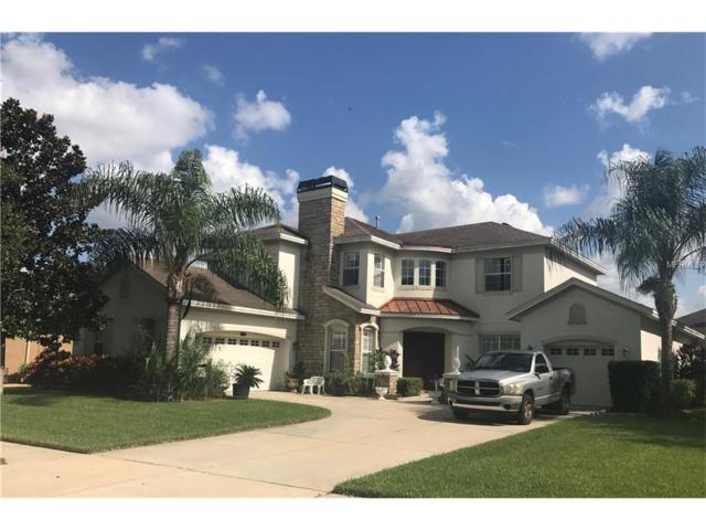 2713 Park Meadow Drive, Valrico, FL 33594 (MLS #T2899600) :: Griffin Group
