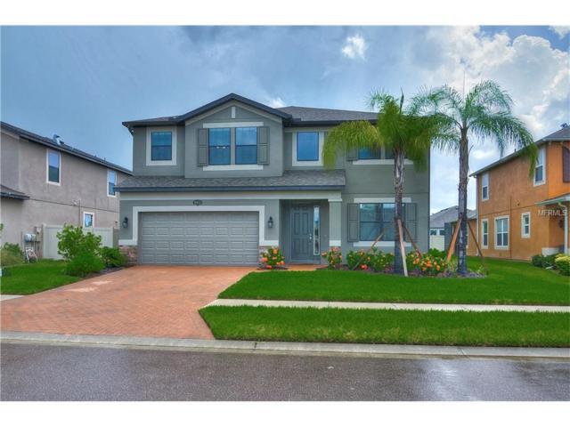 18675 Deer Tracks Loop, Lutz, FL 33558 (MLS #T2899670) :: Arruda Family Real Estate Team