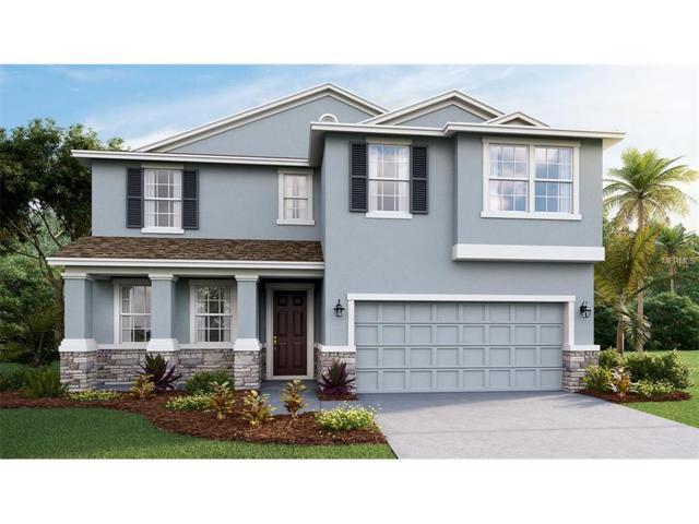 6321 Sunsail Place, Apollo Beach, FL 33572 (MLS #T2899685) :: Arruda Family Real Estate Team