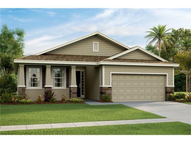 6322 Sunsail Place, Apollo Beach, FL 33572 (MLS #T2899689) :: Arruda Family Real Estate Team
