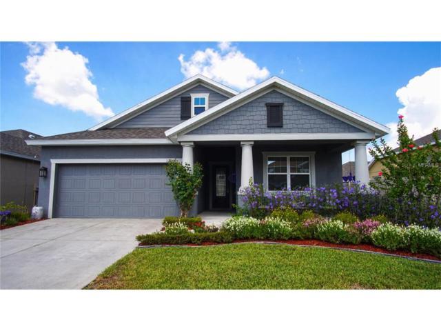 12005 Rambling Stream Drive, Riverview, FL 33569 (MLS #T2899696) :: Arruda Family Real Estate Team
