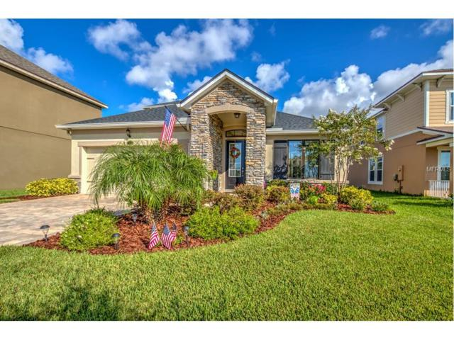 12324 Streambed Drive, Riverview, FL 33579 (MLS #T2899700) :: Arruda Family Real Estate Team