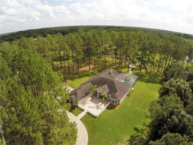 24753 Oaks Boulevard, Land O Lakes, FL 34639 (MLS #T2899785) :: Griffin Group