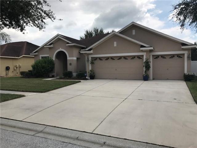 12519 Safari Lane, Riverview, FL 33579 (MLS #T2899818) :: The Duncan Duo & Associates