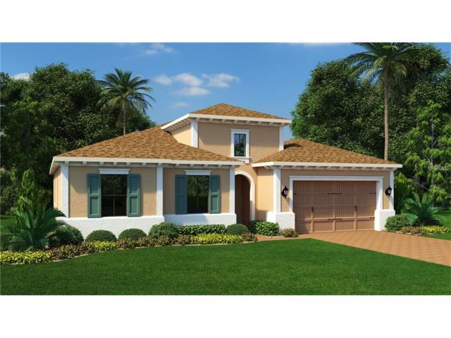 14450 Sunbridge Circle, Winter Garden, FL 34787 (MLS #T2899857) :: Premium Properties Real Estate Services