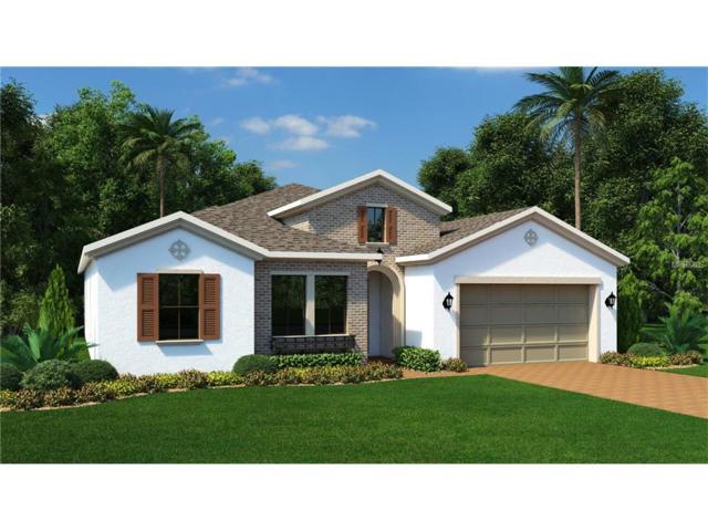 14480 Sunbridge Circle, Winter Garden, FL 34787 (MLS #T2899859) :: Premium Properties Real Estate Services