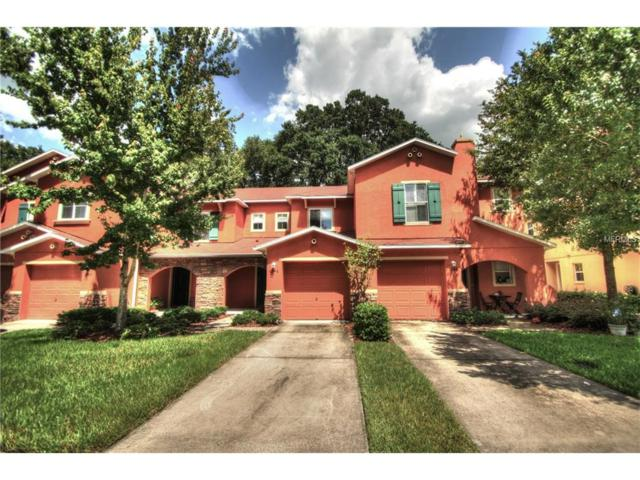 6946 Marble Fawn Place, Riverview, FL 33578 (MLS #T2899861) :: Arruda Family Real Estate Team
