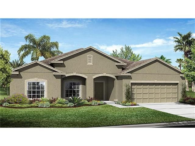 12319 Stone Bark Trail, Orlando, FL 32824 (MLS #T2899876) :: Team Pepka
