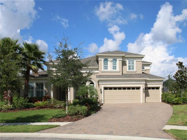 32610 Silvercreek Way, Wesley Chapel, FL 33545 (MLS #T2899888) :: The Duncan Duo & Associates