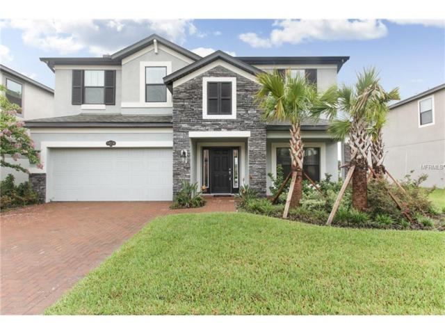 19514 Whispering Brook Drive, Tampa, FL 33647 (MLS #T2899924) :: Arruda Family Real Estate Team