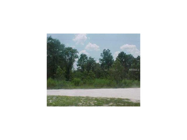 6937 Land O Lakes Boulevard, Land O Lakes, FL 34638 (MLS #T2899942) :: Arruda Family Real Estate Team