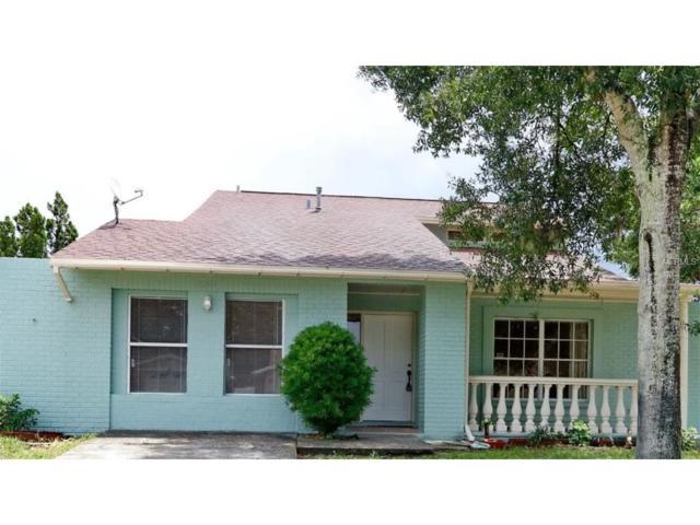 12501 Queensland Lane, Tampa, FL 33625 (MLS #T2899963) :: Premium Properties Real Estate Services