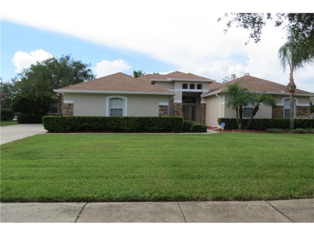7547 Dunbridge Drive, Odessa, FL 33556 (MLS #T2899996) :: Griffin Group