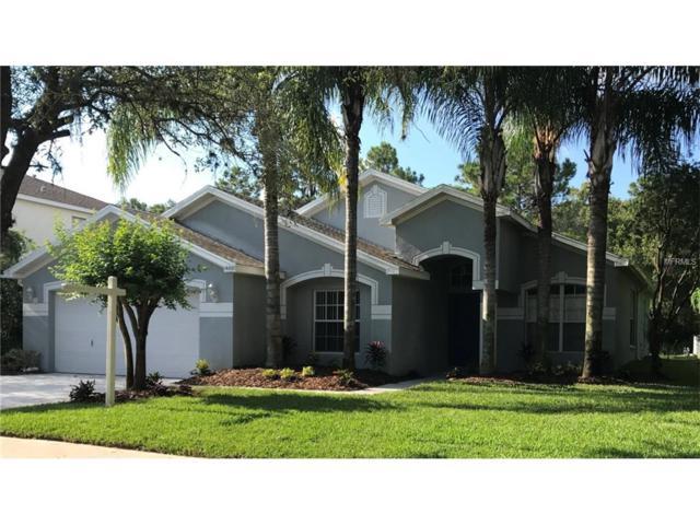 14801 Heronglen Drive, Lithia, FL 33547 (MLS #T2900005) :: The Duncan Duo & Associates