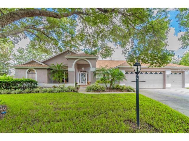 3902 Rolling Terrace Lane, Valrico, FL 33596 (MLS #T2900066) :: Griffin Group