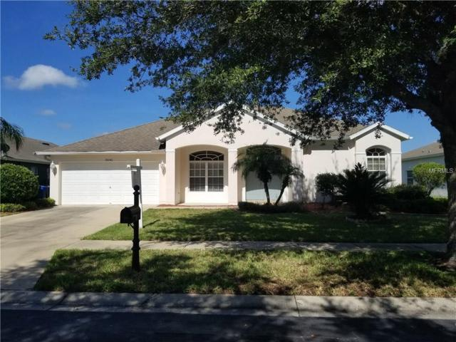 19042 Fern Meadow Loop, Lutz, FL 33558 (MLS #T2900082) :: Griffin Group