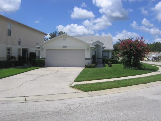 6524 Gentle Ben Circle, Wesley Chapel, FL 33544 (MLS #T2900087) :: Griffin Group