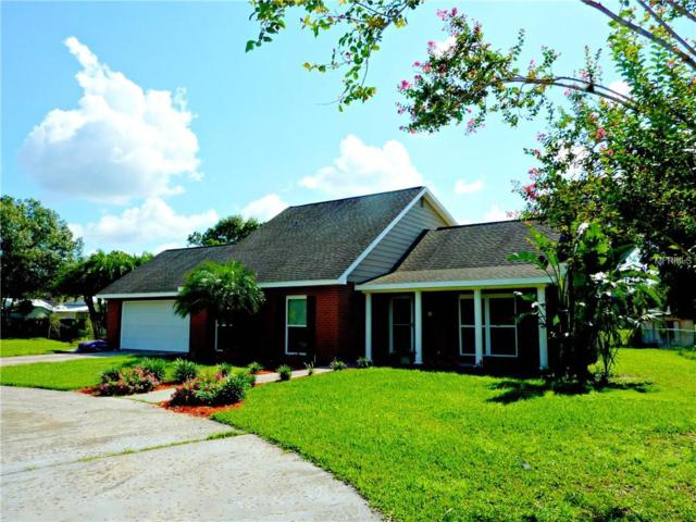 22305 Southshore Drive, Land O Lakes, FL 34639 (MLS #T2900113) :: Griffin Group