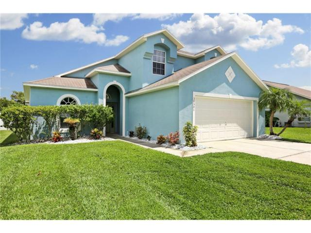30501 Tremont Drive, Wesley Chapel, FL 33543 (MLS #T2900141) :: Griffin Group