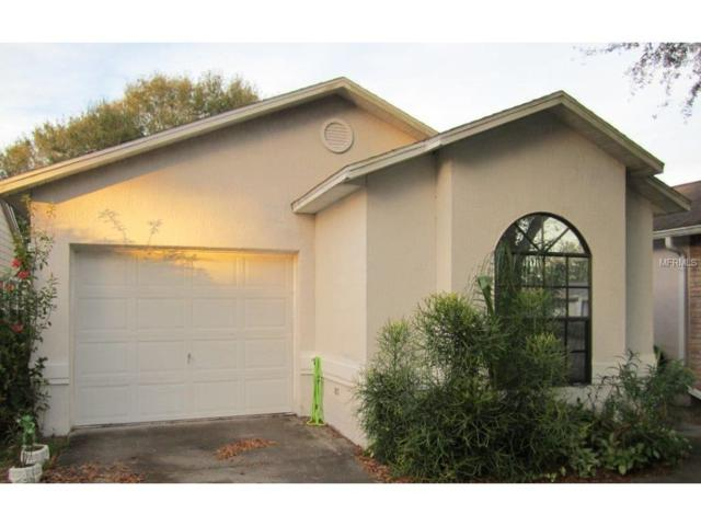 23103 Dover Drive, Land O Lakes, FL 34639 (MLS #T2900187) :: Griffin Group