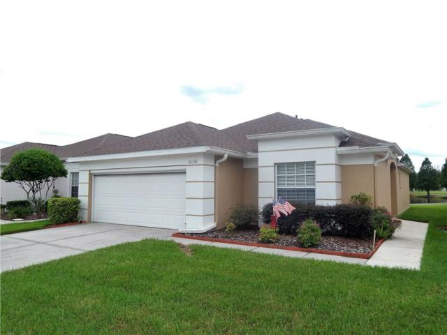 26338 Whirlaway Terrace, Wesley Chapel, FL 33544 (MLS #T2900238) :: Griffin Group