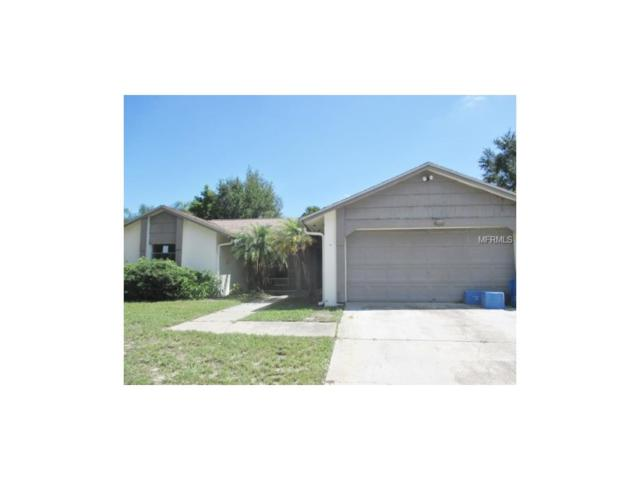 7615 Rustic Drive, Tampa, FL 33634 (MLS #T2900248) :: Griffin Group
