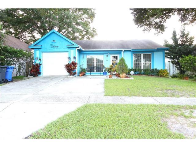 316 Laxton Lane, Valrico, FL 33594 (MLS #T2900310) :: Griffin Group