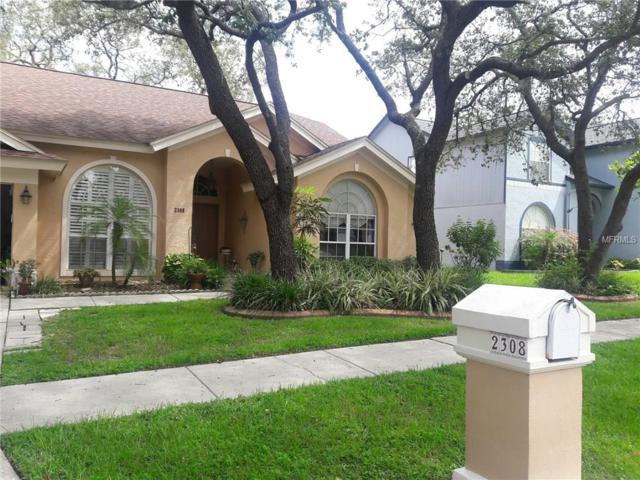 2308 Millcreek Court, Valrico, FL 33596 (MLS #T2900312) :: Griffin Group
