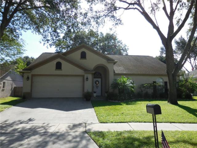 3007 Sprawling Oaks Place, Valrico, FL 33596 (MLS #T2900337) :: Griffin Group