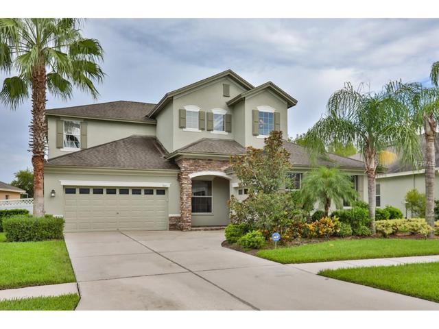 3211 Grassglen Place, Wesley Chapel, FL 33544 (MLS #T2900414) :: Griffin Group