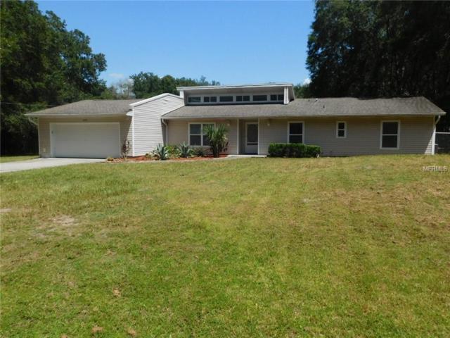 6648 Birdie Court, Wesley Chapel, FL 33544 (MLS #T2900439) :: Griffin Group