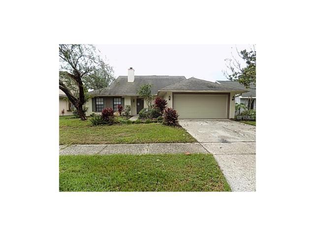 1413 Star Jasmine Lane, Brandon, FL 33511 (MLS #T2900473) :: Griffin Group
