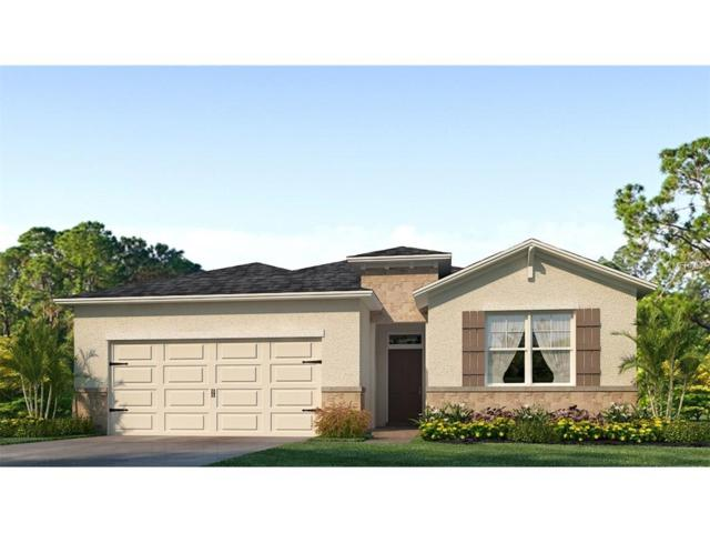 13625 Hunting Creek Place, Spring Hill, FL 34609 (MLS #T2900518) :: Griffin Group