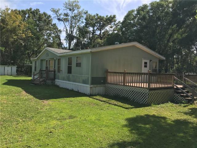 4115 Mitchell Road, Land O Lakes, FL 34638 (MLS #T2900568) :: Team Bohannon Keller Williams, Tampa Properties