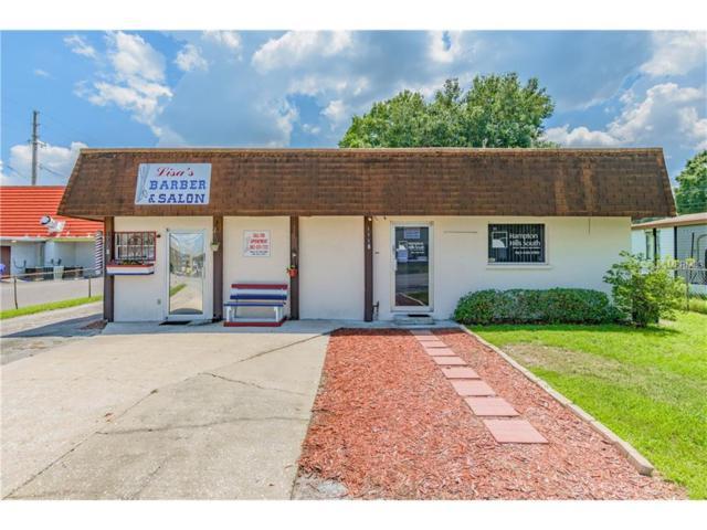 1114 Mayflower Drive, Lakeland, FL 33810 (MLS #T2900585) :: Gate Arty & the Group - Keller Williams Realty