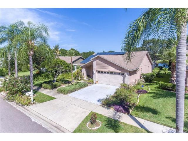 11513 Whispering Hollow Drive, Tampa, FL 33635 (MLS #T2900777) :: Baird Realty Group