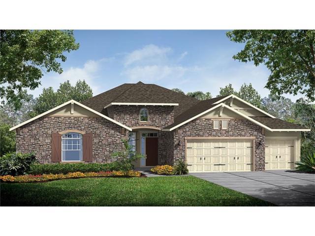 18403 Belfair Glen Place, Lutz, FL 33559 (MLS #T2900939) :: The Duncan Duo & Associates
