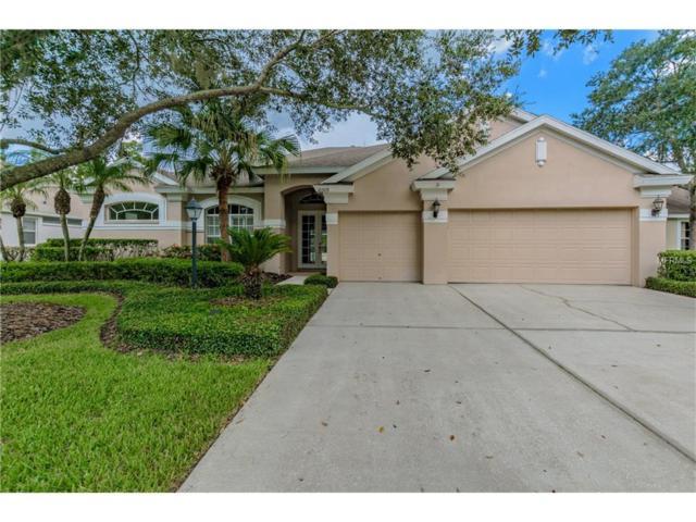 10309 Greenhedges Drive, Tampa, FL 33626 (MLS #T2901091) :: The Duncan Duo & Associates