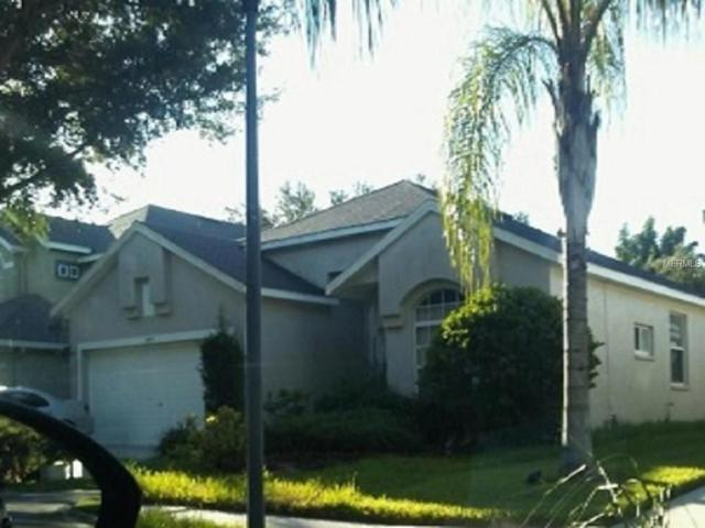 8209 Canary Canyon Way, Tampa, FL 33647 (MLS #T2901151) :: Team Bohannon Keller Williams, Tampa Properties
