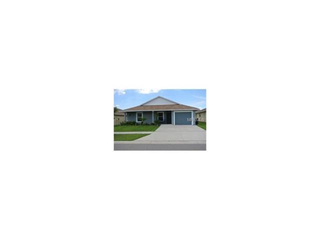 2002 Peaceful Palm Street, Ruskin, FL 33570 (MLS #T2901159) :: Team Bohannon Keller Williams, Tampa Properties