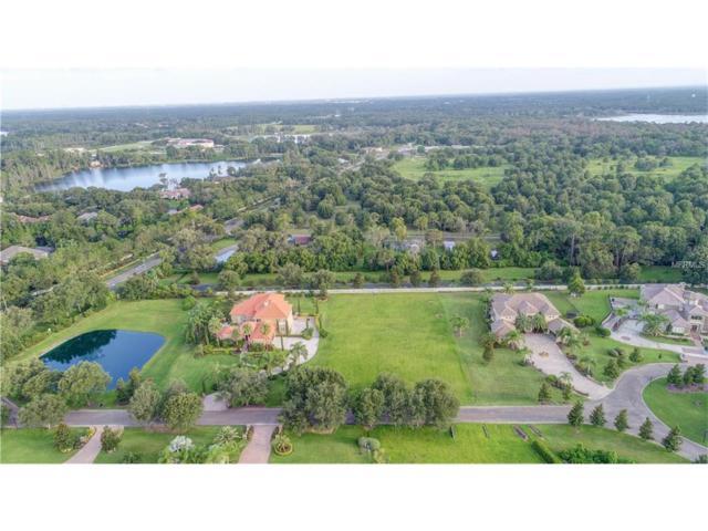 8606 Dolce Vita Lane, Odessa, FL 33556 (MLS #T2901625) :: Team Bohannon Keller Williams, Tampa Properties