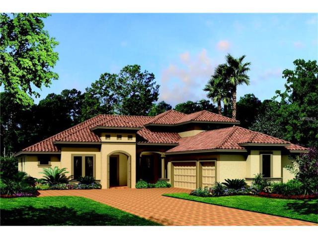 10518 Cory Lake Drive, Tampa, FL 33647 (MLS #T2901834) :: Team Bohannon Keller Williams, Tampa Properties