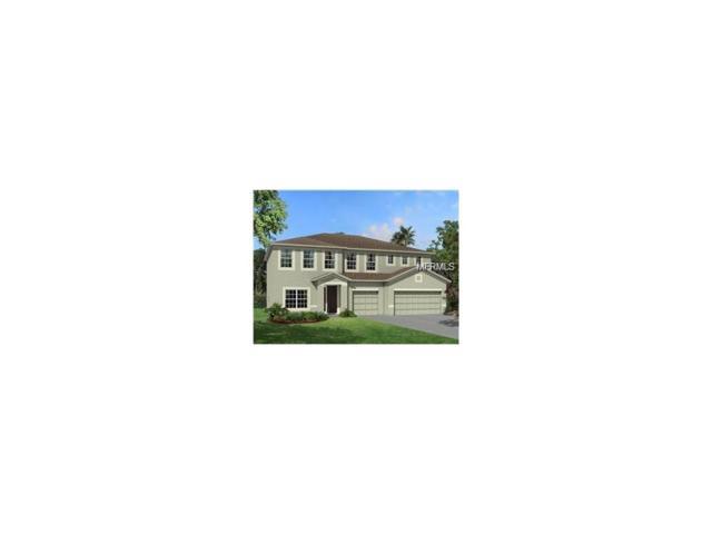 10741 Cory Lake Drive, Tampa, FL 33647 (MLS #T2902057) :: Team Bohannon Keller Williams, Tampa Properties