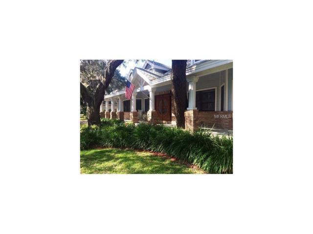 335 Sanctuary Drive, Crystal Beach, FL 34681 (MLS #T2902098) :: Chenault Group