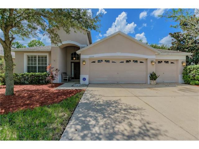 19244 Meadow Pine Drive, Tampa, FL 33647 (MLS #T2902132) :: Team Bohannon Keller Williams, Tampa Properties
