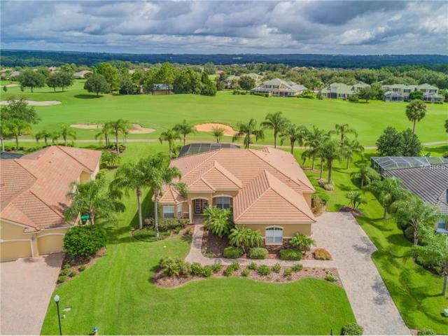 33937 Americana Avenue, Dade City, FL 33525 (MLS #T2902353) :: Team Bohannon Keller Williams, Tampa Properties