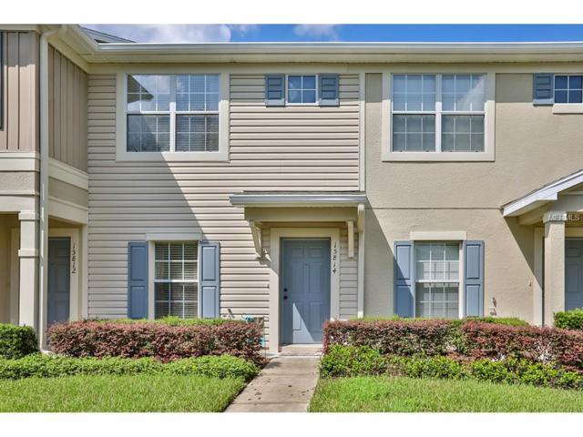 15814 Fishhawk Falls Drive, Lithia, FL 33547 (MLS #T2902431) :: Dalton Wade Real Estate Group