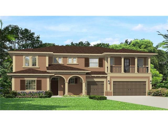 3241 Cordoba Ranch Boulevard, Lutz, FL 33559 (MLS #T2902492) :: The Duncan Duo & Associates
